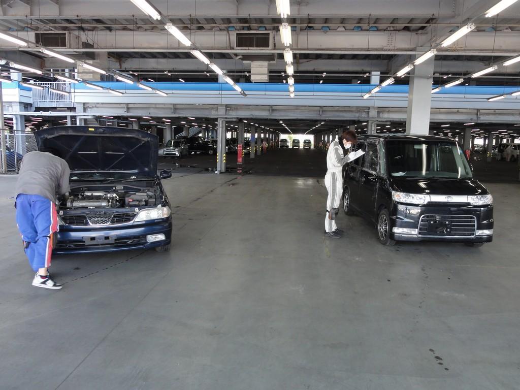 TAA - Японский авто аукцион с большой историей: заглянем под капот торгов