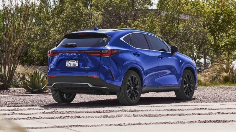 Lexus NX вид сзади
