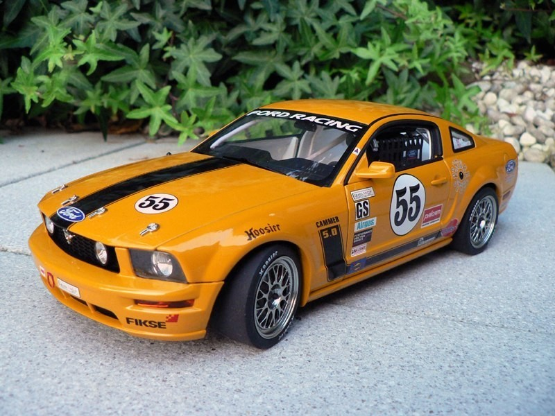 Ford Mustang FR500C фото